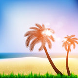 Summer Beach Poster with palm Royalty Free Stock Photo