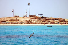 Summer beach on Red Sea in Egypt Stock Photos