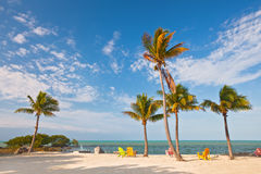 Summer beach scene with palm trees and lounge chairs royalty free stock photos