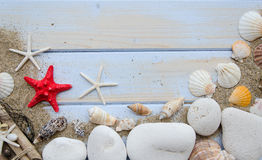 Summer beach sea concept.White Wooden background with different shells, white stones and sand.Red sratfish in the center Stock Photos