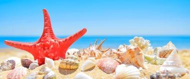 On summer beach Stock Photos