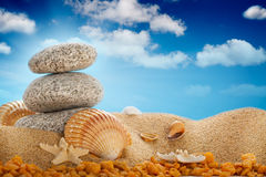 Summer beach; stones and shells Stock Photo