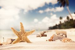 Summer beach with strafish and shells Royalty Free Stock Photos