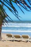 Summer beach sun chairs lounger near tropical sea Royalty Free Stock Photo