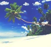 Summer Beach Tropical Paradise Seascape Concept Royalty Free Stock Photo