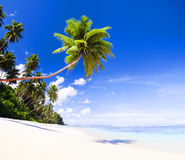 Summer Beach Tropical Paradise Seascape Concept Royalty Free Stock Images