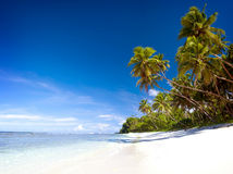 Summer Beach Tropical Paradise Seascape Concept Stock Images