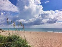 Summer at the beach. Beach view of Seagrass and sand , clouds in background during summer Stock Images