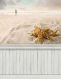 Summer beach wall background/backdrop Royalty Free Stock Image