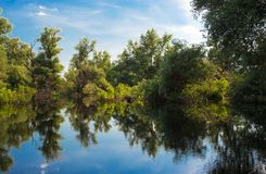 Summer beautiful river landscape Danube Stock Image