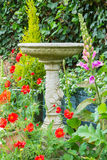 Summer bedding flowers with decorative stone bird bath Stock Photos