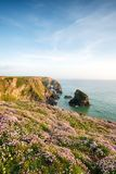 Summer at Bedruthan Steps Royalty Free Stock Image