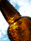 Summer Beer. Macro of beer bottle neck and shoulders backlit by the sun Stock Image
