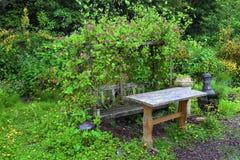 Summer bench Stock Photo