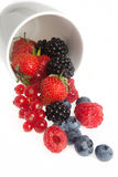 Summer berries. Delicious summer fruits and berries rolling out of a white mug Stock Photography