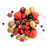 Summer berries. Stock Images