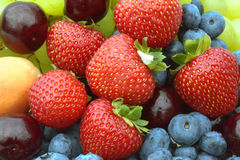 Summer berries Stock Image