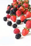 Summer berries Stock Photography