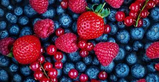 Summer Berries Background. Fresh Berry mix with Strawberry, Raspberry, Red currant, Blueberry and Blackberry, top view.  stock photo