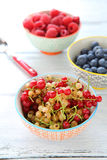 Summer berries in bowls currants Stock Image