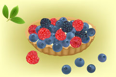 Summer berries cake vector Royalty Free Stock Photography