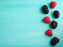 Summer berries card Stock Photos