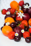 Summer Berries and Fruits cherries, strawberries, plums, apricot Stock Photos