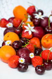 Summer Berries and Fruits cherries, strawberries, plums, apricot Stock Image