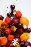 Summer Berries and Fruits cherries, strawberries, plums, apricot Stock Photography