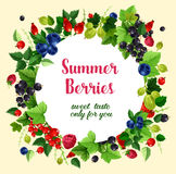 Summer berries and fruits vector poster. Berries poster of raspberry, red and black currant, cherry and strawberry, gooseberry, blueberry or blackberry and Royalty Free Stock Photos