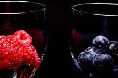 Summer berries Stock Image