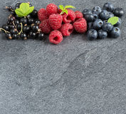 Summer berries on grey background. Raspberries, currants and blueberries on grey background. Copyspace above. Selective focus royalty free stock photography