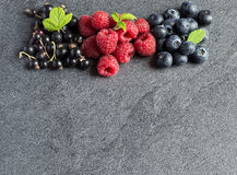 Summer berries on grey background. Raspberries, currants and blueberries on grey background. Copyspace above. Selective focus stock photos
