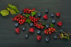 Summer berries with leaves on a dark background close-up. Summer berries with leaves on dark background close-up royalty free stock photography