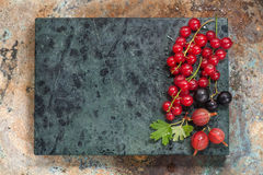 Summer berries on metallic background with space for text. Stock Image