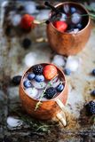 Summer berries moscow mule royalty free stock image
