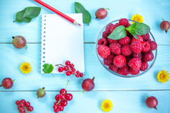 Summer berries, notepad and pencil Royalty Free Stock Image