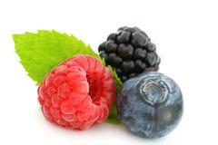 Summer Berries On White Stock Photo
