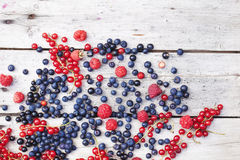 Summer berries on planks. Red and blue summer berries on old wooden planks, bluebeery, red and black currant Stock Images