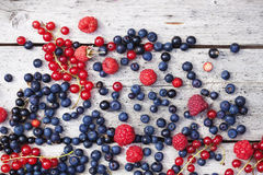 Summer berries on planks. Red and blue summer berries on old wooden planks, bluebeery, red and black currant Stock Photography