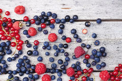 Summer berries on planks. Red and blue summer berries on old wooden planks, bluebeery, red and black currant. Close-up Royalty Free Stock Image