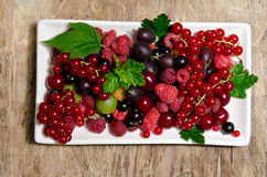 Summer berries in porcelain dish Stock Photos