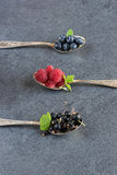 Summer berries in spoons on grey background. Raspberries, currants and blueberries in spoons on grey background. Selective focus stock photos