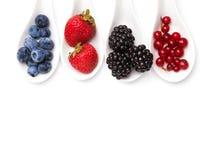Summer berries on spoons Stock Image