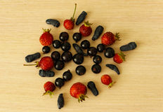 Summer berries. Strawberries, black currants, honeysuckle stock images
