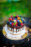 Summer berry cake. On stump with fresh berries royalty free stock image