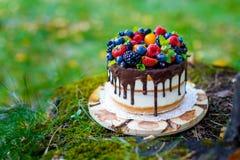 Summer berry cake Royalty Free Stock Photo