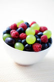 Summer berry fruits Royalty Free Stock Photo