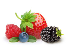 Summer berry fruits. Berries. Raspberry, Strawberry, Blueberry and Blackberry Isolated on White Background Stock Images