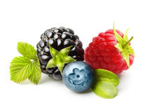 Summer berry fruits isolated. Summer berry fruits. Berries. Raspberry, Blueberry, Blackberry Isolated on White Background Stock Photo